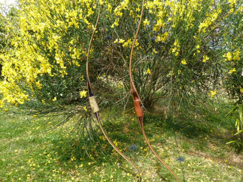 Chinook de Dan Toelke ( montana bows) 905231P1080353