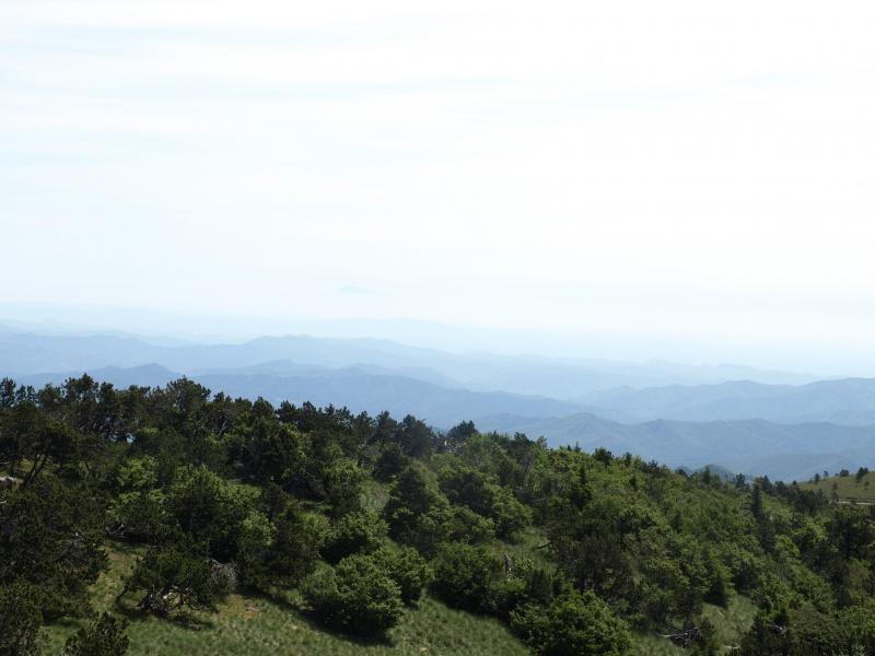 Les Cevennes autour du Mt Aigoual 906796P6238086