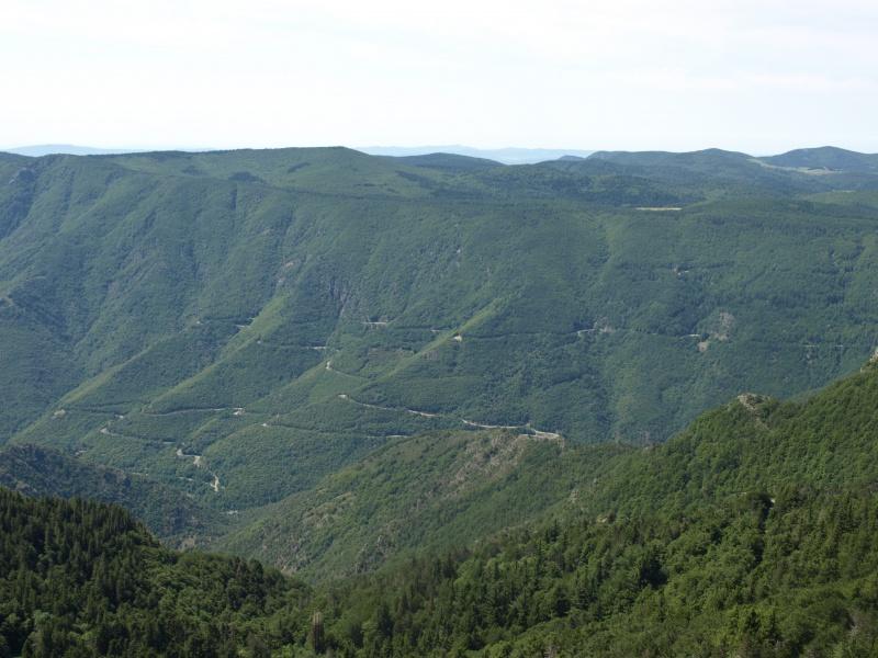 Les Cevennes autour du Mt Aigoual 910300P6238089