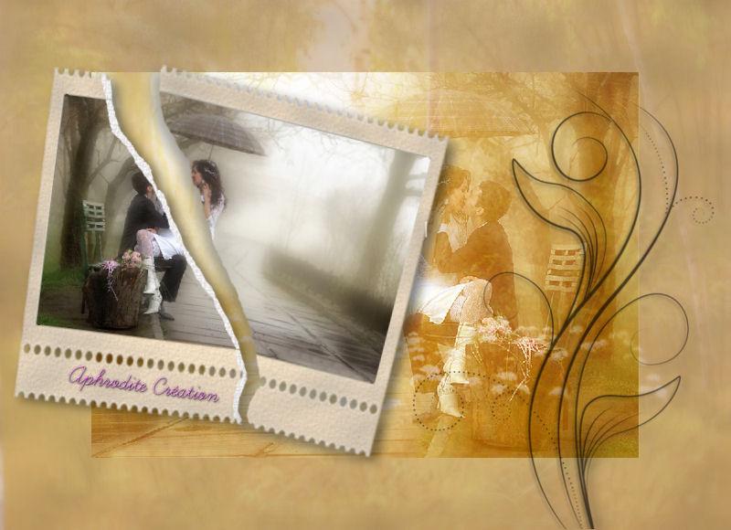 13-Cours Psp-Image déchirée - Page 3 913148papierdchirfinis