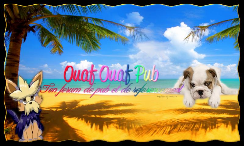 OOP forum de publicité (Actualisation pour le 29 Dec 2016) 913641BannireOOP