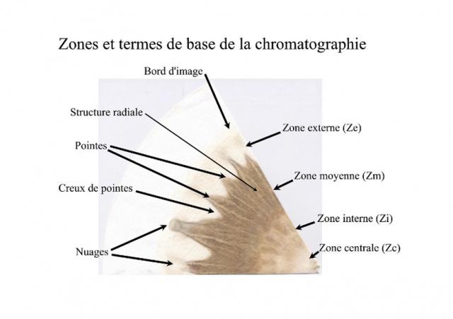 La chromatographie, visualiser l'état de santé d'un sol, d'un compost, d'un aliment 9179751Imagebase