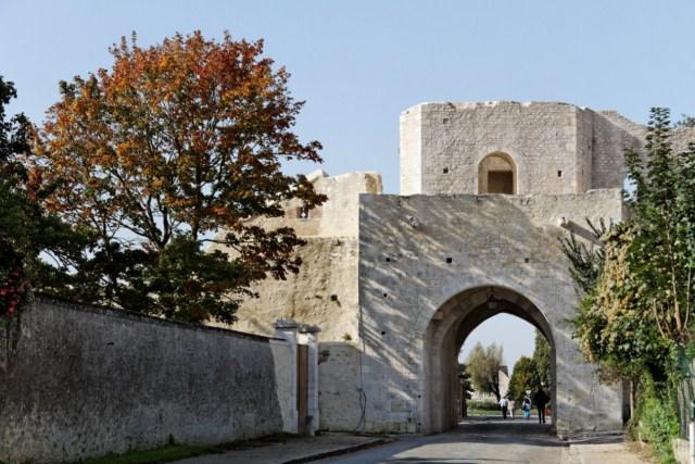 Provins (77) cité médiévale 919904IMG_7095_DxO__640x480_