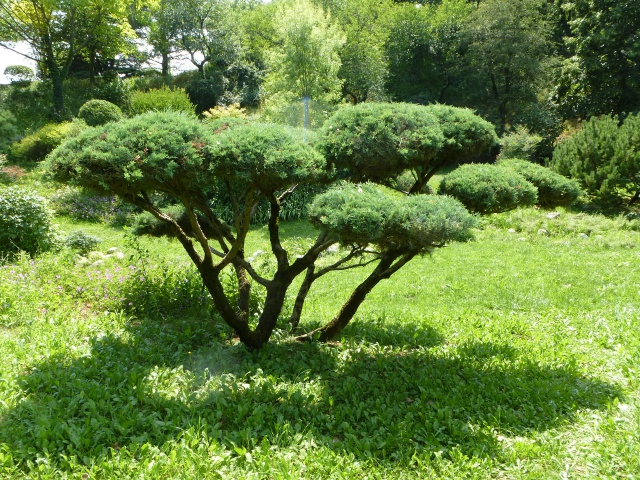 (26) Jardin Zen d'Erik Borja - Beaumont Monteux 931288P1020198