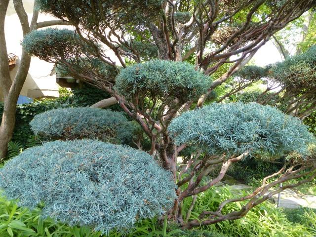(26) Jardin Zen d'Erik Borja - Beaumont Monteux 932775P1020247