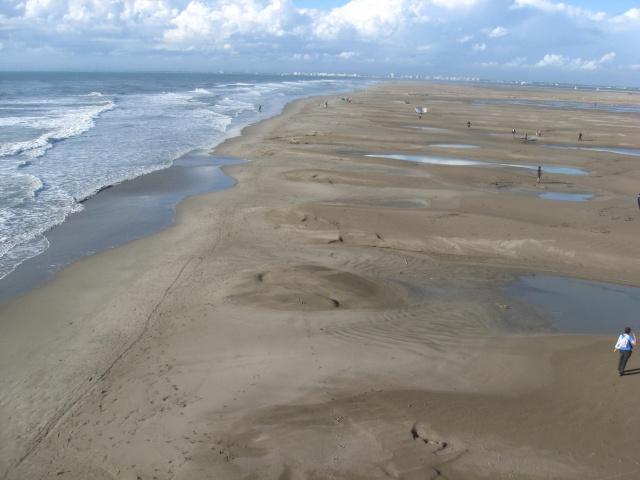 état de la plage de l'éspi!!! 935960IMG7860