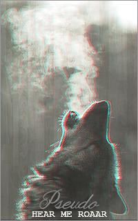 ● R E C K L E S S   L I F E ● 938843wolf