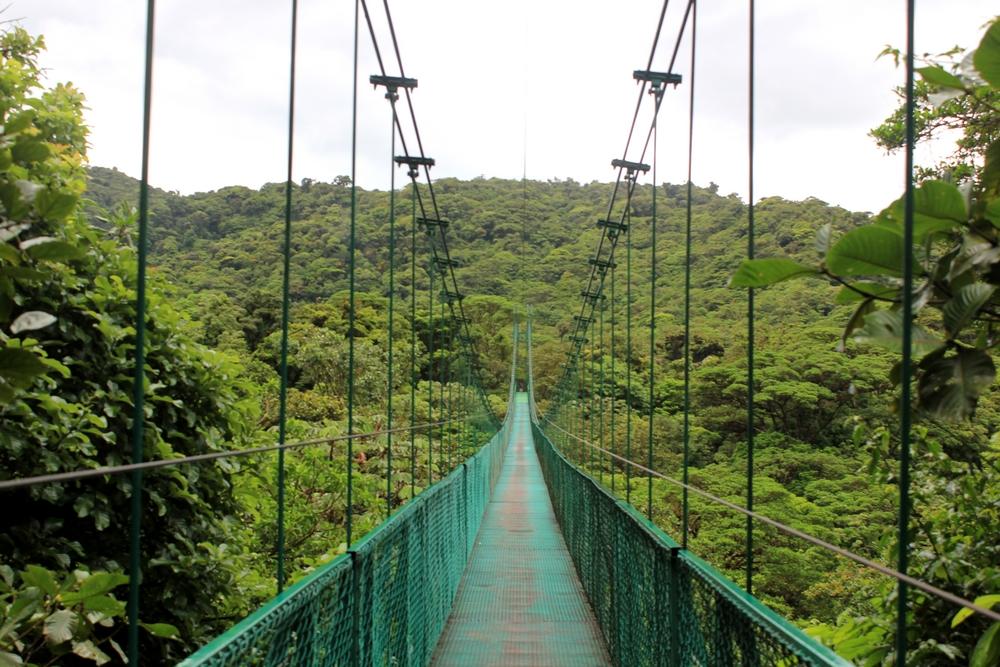 15 jours dans la jungle du Costa Rica - Page 2 938886santa2