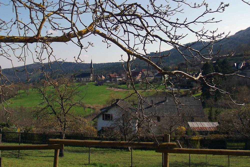 Les oranges outans fêtent le printemps en Alsace - 21 mai 2016 - Page 3 940131DSCF6985