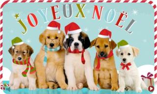 Joyeux Noël à toutes et à tous! 941712chiensnoel
