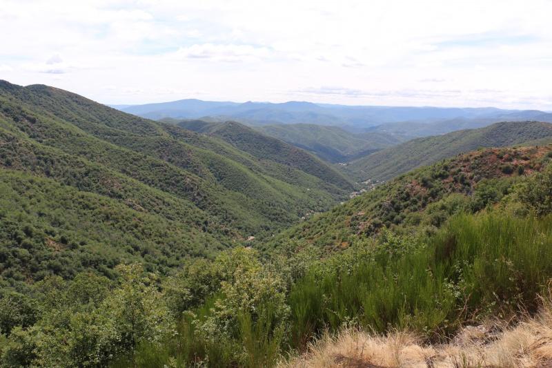 Les Cevennes autour du Mt Aigoual 942272IMG5221