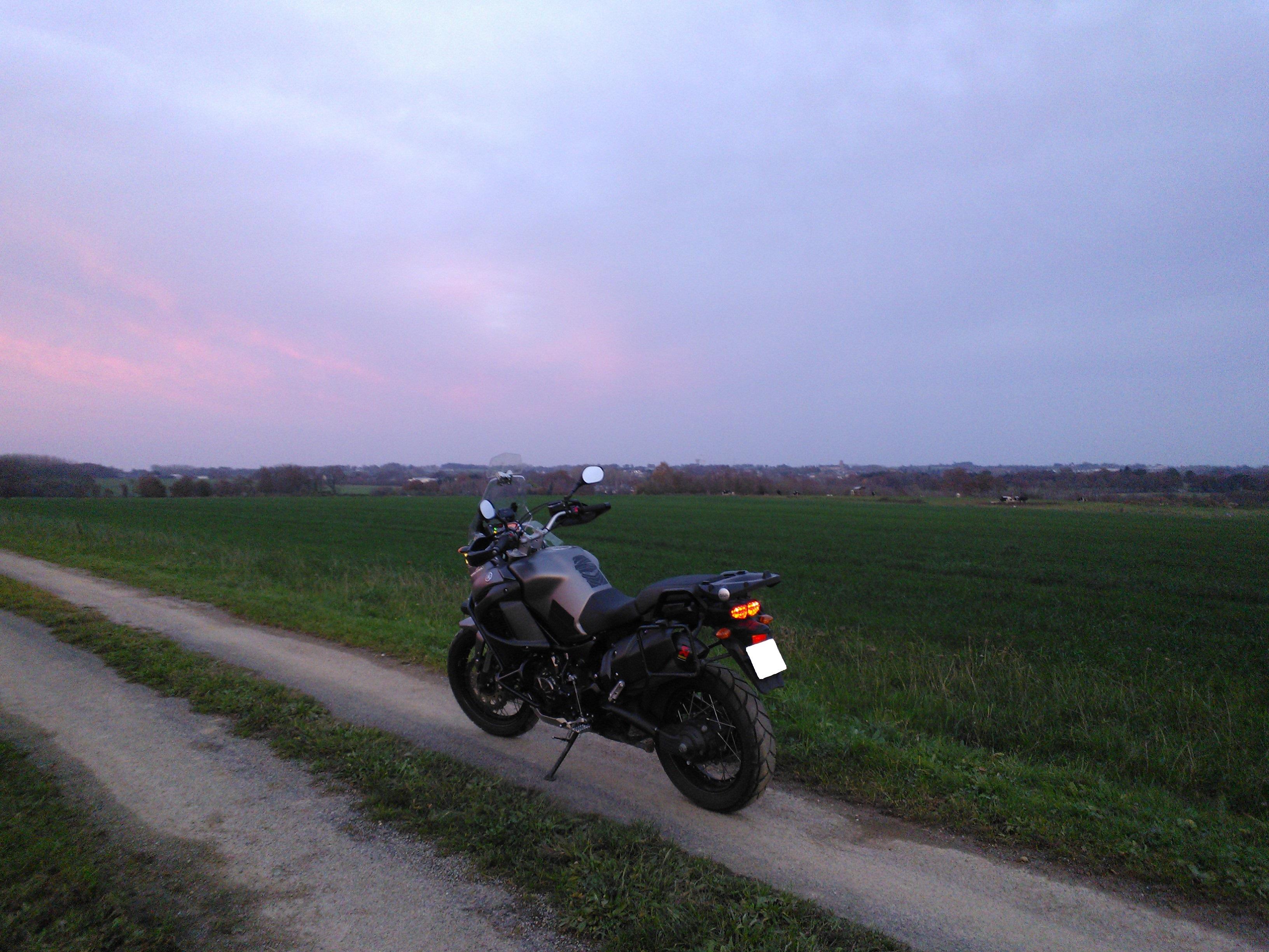 Balade dans les champs en Bretagne 945516Pipriac201411291