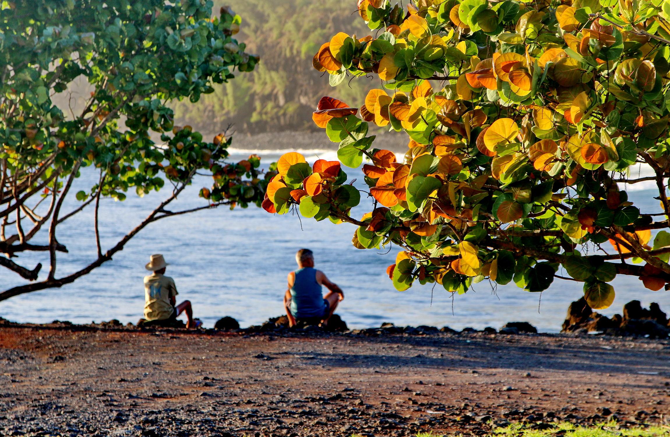 [Vie des ports] Les ports de la Réunion - Page 5 947015capmchantlangevin160