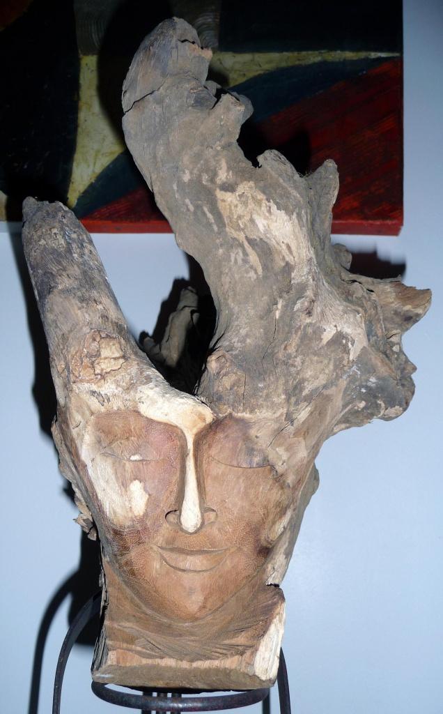 Aide traitement racine arbre 'platane) 947675P1080691