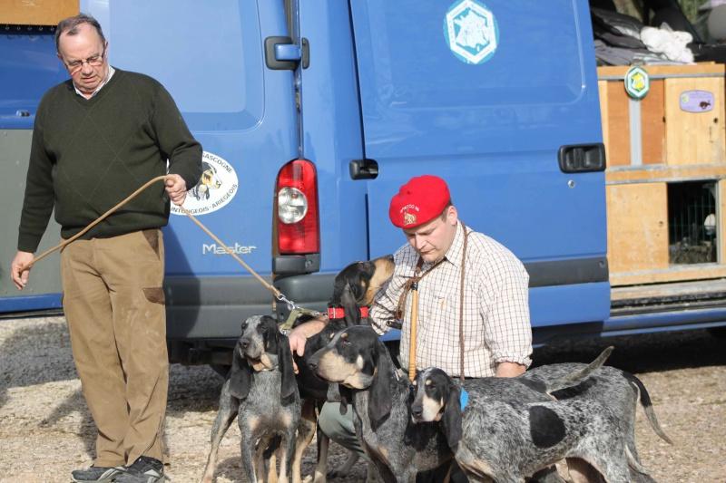 Brevet de chasse sur lièvre Marnay (71) 7 et 8 mars 2015 947976IMG6594