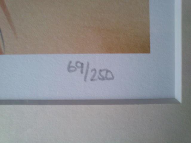 [Disney Store] 2012 : l'Année des Princesses - Page 39 948235DSC0067