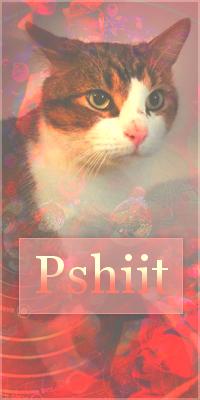 Pshiit