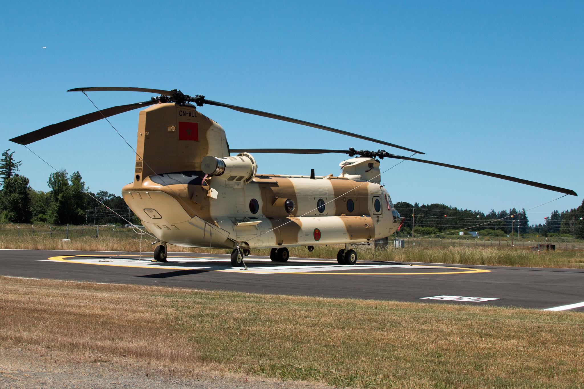 CH-47D CHINOOK des Forces Royales Air  9561492111470222358b307934ak