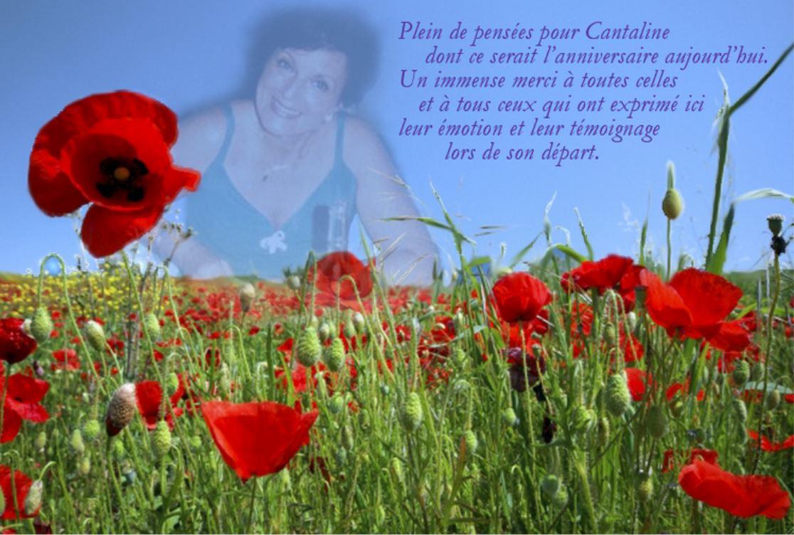 Pour CANTALINE... - Page 5 960453Canta4septembre
