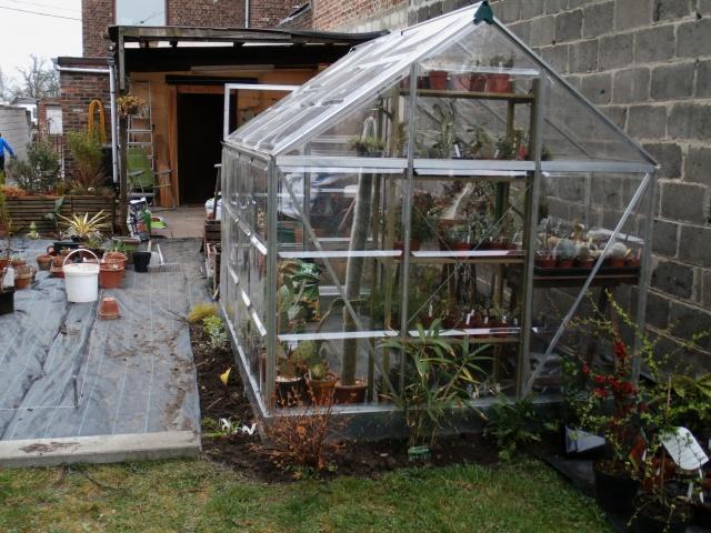 Phyllo - nouveau jardin 966422P3160018