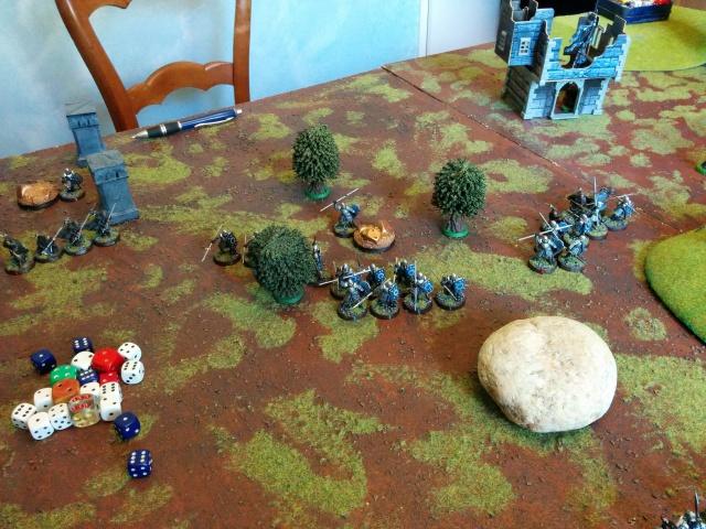Mordor vs Arnor/Royaumes sylvestres 1000pts 967996IMG20150627162509