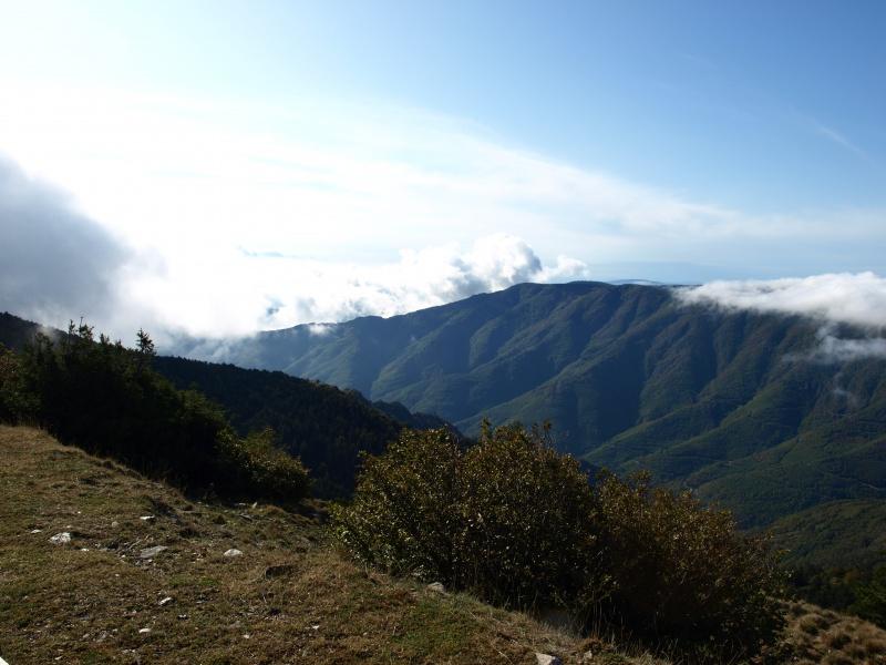 Les Cevennes autour du Mt Aigoual 969393P1012242