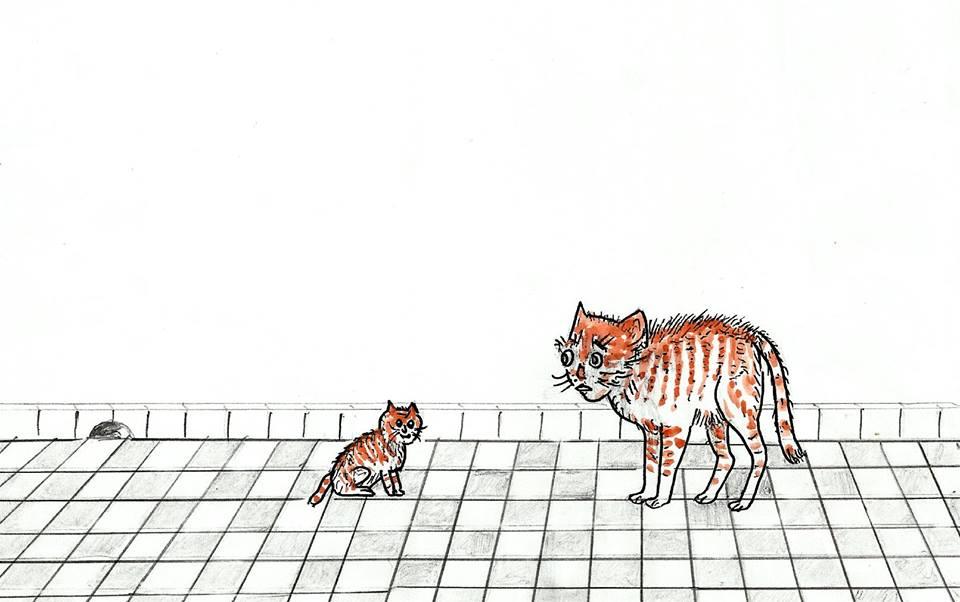 القط والفأر / محمد إبراهيم بوعلو 97062997f3