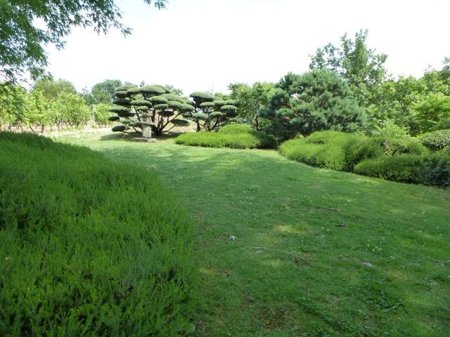 (26) Jardin Zen d'Erik Borja - Beaumont Monteux 972693P1020141