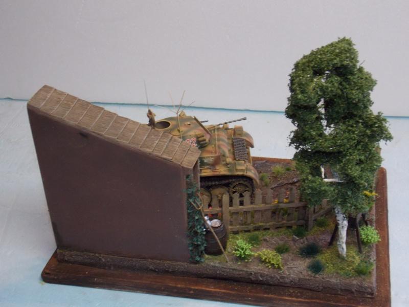 Un Lynx quelque part sur le front est 1944 - char Luchs ASUKA deco BLACKDOG 1/35 - Page 3 972757DSCN5126