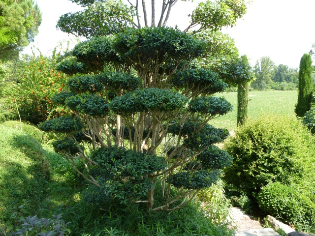 (26) Jardin Zen d'Erik Borja - Beaumont Monteux 976201P1020230