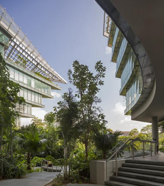 [Lucasfilm] Inauguration du Sandcrawler building à Singapour (2013)  978409scb15