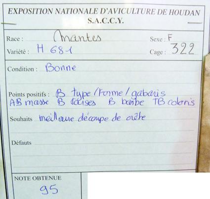 exposition d'aviculture Foire ST MATTHIEU 27 et 28 Septembre 2014 - Page 3 982836P1150649