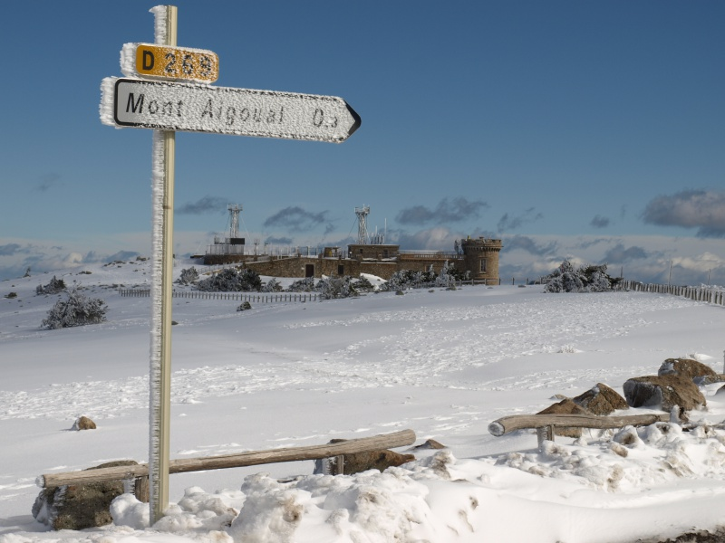 Les Cevennes autour du Mt Aigoual 984034P2200386