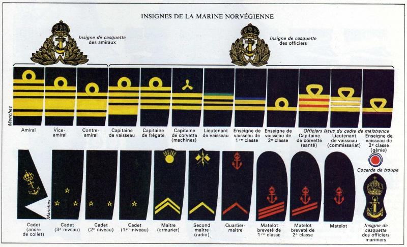 *Les insignes de l'armée Norvégienne 995333NorMar