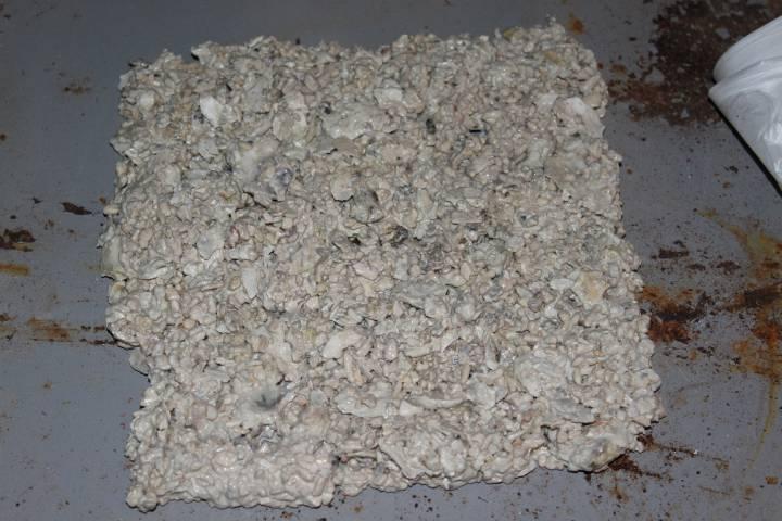 réalisation de pierres artificielle pour récifale 996351PXR_IMG_0032