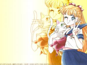 Sailor Moon Mini_139592wall01800