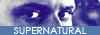 → Nos partenaires Mini_199079logo3