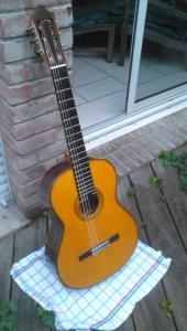 La guitare qui vous fait rever ? dream guitars Mini_220320594170bomba