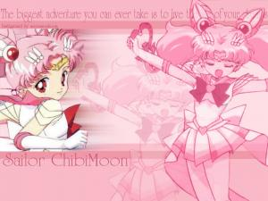 Sailor Moon Mini_246546006800