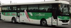 Le réseau CapOrne Mini_250235DSC04491modif