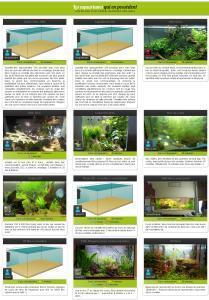 aquarium boule - Page 2 Mini_307144Sanstitre5