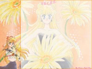 Sailor Moon Mini_308916new10