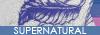 Oo-Supernatural-oO RPG Mini_436103logo2