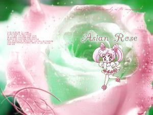 Sailor Moon Mini_440903asianrosewp