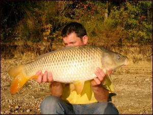 Octobre 2010. Mini_51991752