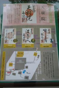 TR : Japon , nous voila !  Mini_751006201605101146