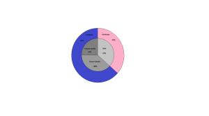 Créer des camemberts à sous-secteurs Mini_846306Cancer