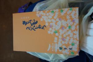 TR : Japon , nous voila !  Mini_8743312016050907