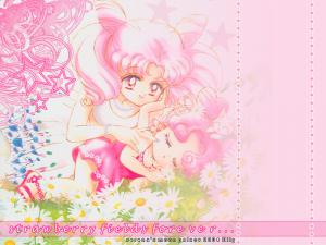 Sailor Moon Mini_914727chibi1800600