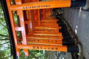 TR : Japon , nous voila !  Mini_9360802016051330